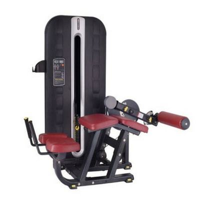 Fitline Leg Curl Gym Machine