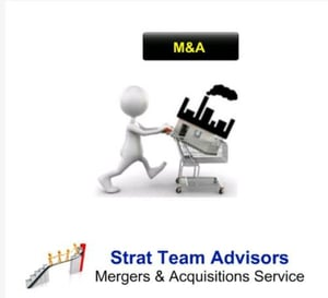 Merger And Acquisition Service