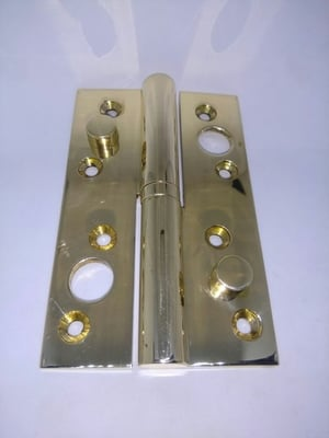 Brass Security Hinges