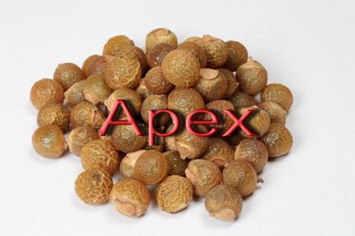 Finest Grade Nut Shell