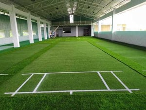 Artificial Cricket Turf Pitch