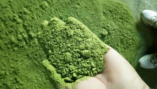 High Quality Moringa Powder