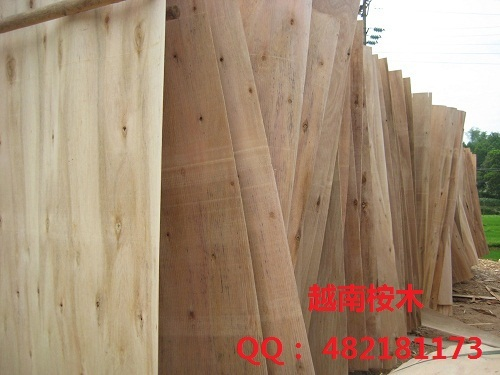 Eucalyptus Core Veneer And Rubber Core Veneer