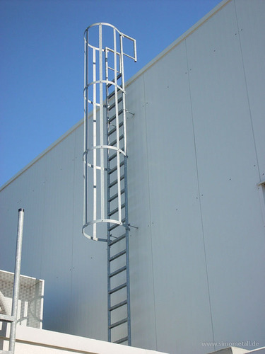 Wall Mounted Monkey Cage Ladder