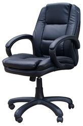 Luxury Revolving Office Chair