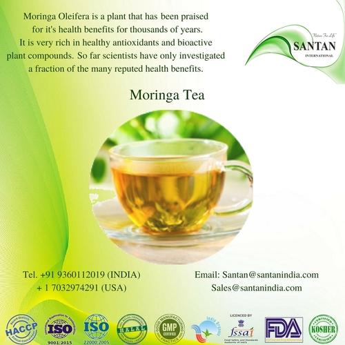 100% Natural Organic Moringa Green Tea