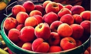 Fresh And Healthy Apples