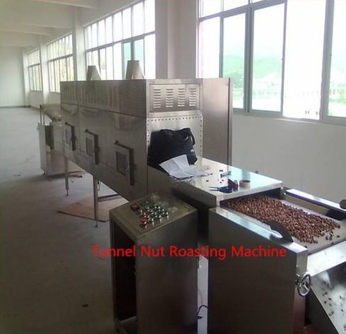 Automitic Electric Belt Groundnut Roaster/Microwave Roasting Machine