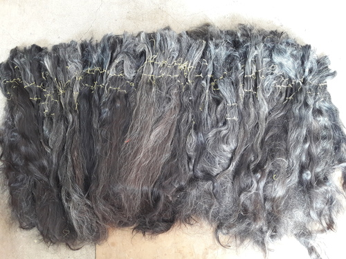 Natural Grey Hair 70 Centimeter Long And Above