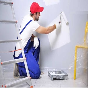 Expert Wall Painting Contractor