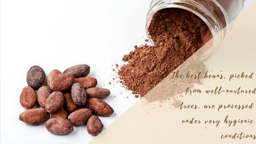 Cocoa Beans, Cocoa Beans Manufacturers & Suppliers, Dealers