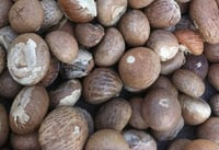Durable Dried Betel Nuts
