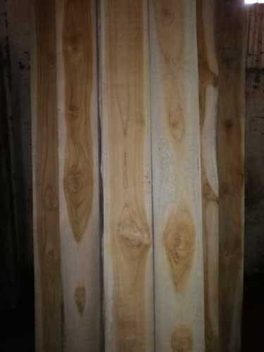 High Strength Ivory Coast Teak Wood At Best Price In New
