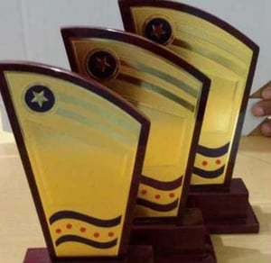 Economical Customized Wooden Trophies