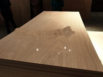 Brown Color Commercial Plywood Certifications: Phytosanitary