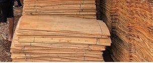 Eucalyptus Rotary Cut Core Veneer