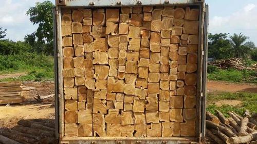 Genuine Ghana Teak Wood Longer Life
