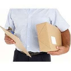 Domestic Courier Services, Domestic Courier Service Providers, India