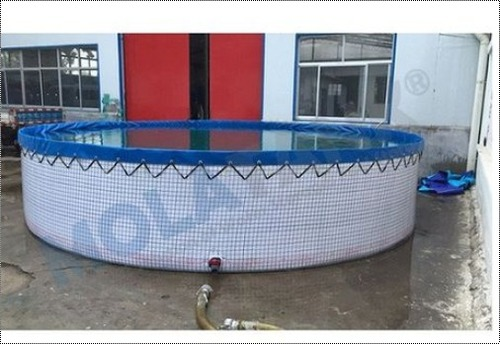 Fish Tank Manufacturers, Fish Tank Suppliers and Exporters