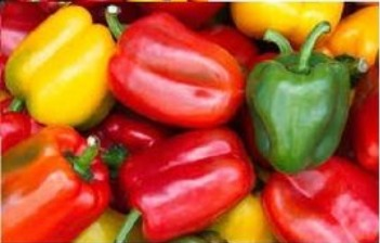 All Type Complete Purity Bell Pepper