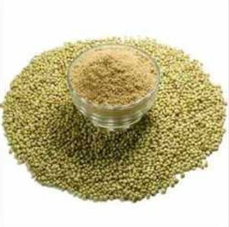 Green Dried Coriander Powder
