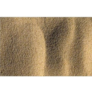 Ennore Sand
