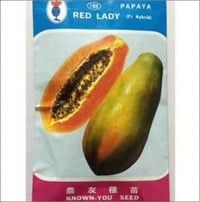 Red Lady Papaya F1 Hybrid Seed