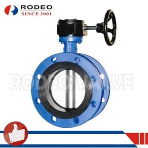 Rubber Sealed Concentric Butterfly Valve