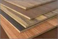 Rectangular Shape Hardwood Plywoods