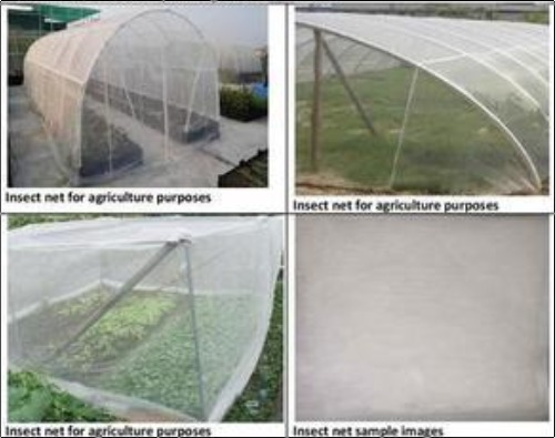 Light Weight Insect Net