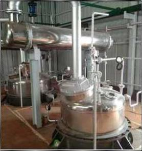 Automatic Herbal Extract Plant
