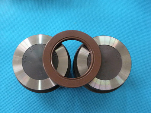 Rubber Oil Seal Mold