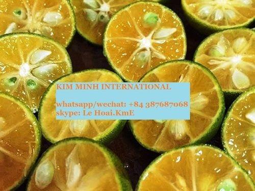 Fresh Green Calamansi Fruit