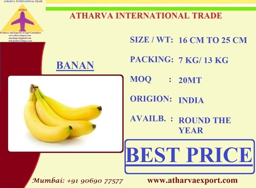 Export Quality Indian Banana