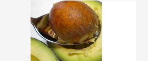 Natural Organic Avocado Seed