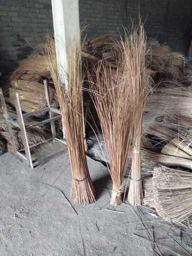 Palm Ekel Brooms