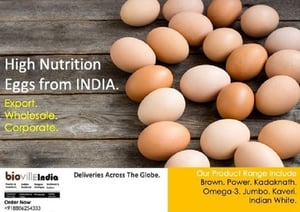 Indian Poultry Eggs