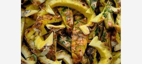 100% Organic Pineapple Shell