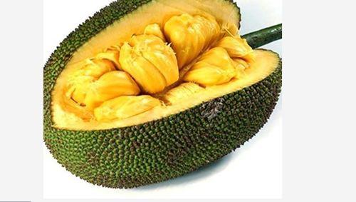 Naturl Whole Frozen Jackfruit