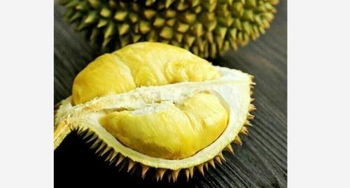 Frozen Durian Fruit (Sub-Tropical)