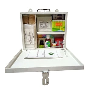 Wall-Mount Cum Carry First Aid Kit