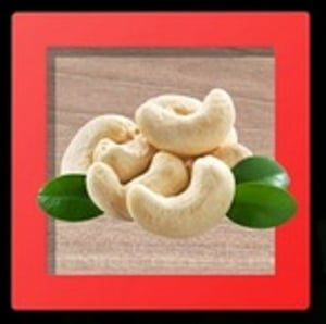 Export Quality Cashew Nuts