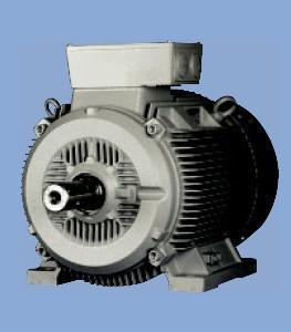 1 Lg6 Series Super Energy Efficient Motor