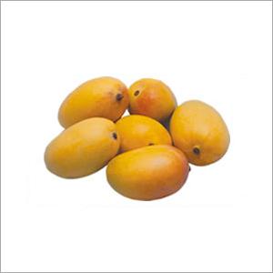 Mango Ripening Chambers