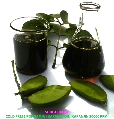 Pongamia Oil/ Karanja Oil