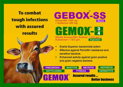 GeBox Bolus