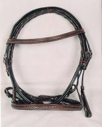 Leather Bridle Braided