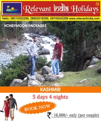 Honeymoon Package In Kashmir