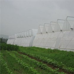 Ventilated Greenhouse