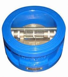 Dual Plate Check Valve Rubber Linings